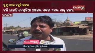 Fire Engulfs Acres Of Cashew Plantation In Begunia Area Of Khorda Dist || KalingaTV