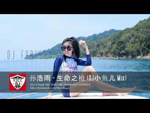 孙浩雨 - 生命之枪 (DJ小鱼儿 Mix) | Sheng ming zhi qiang