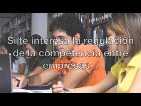 licenciado-en-economía