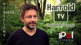 HARROLD TV - Andrzej Piaseczny