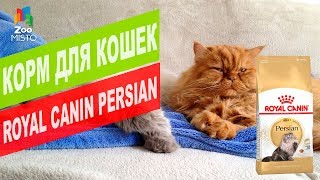 Корм для КОШЕК ПЕРСИДСКОЙ ПОРОДЫ |  ROYAL CANIN PERSIAN REVIEW
