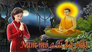 Vợ chồng tu ngàn năm mới gặp duyên nợ ngàn đời   Lời Phật Dạy