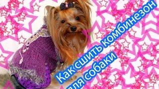 Как сшить комбинезон для собаки(Моя страница ВК http://vk.com/vseyorki Рукодельники Вступайте! http://vk.com/handtrend., 2016-03-28T13:11:34.000Z)