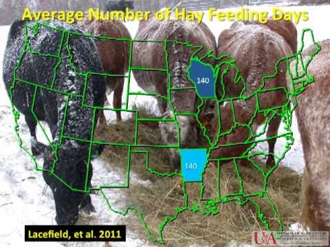 300 Days of Grazing Program - Forage Management