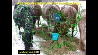 300 days of grazing program forage management