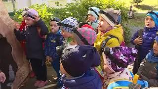 Юные геологи из 45-го детского сада искали полезные ископаемые