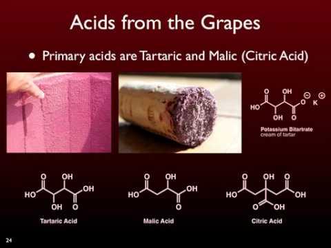essay explaining the chemistry involved in the sense of taste