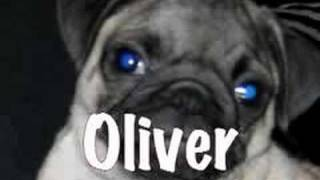 Oliver Vs The Skull