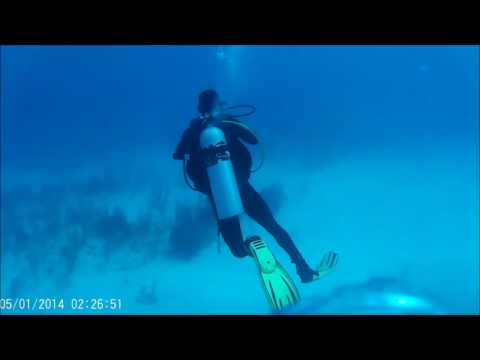 Diving the Wall, Grand Turk and sharks 26,06,2017