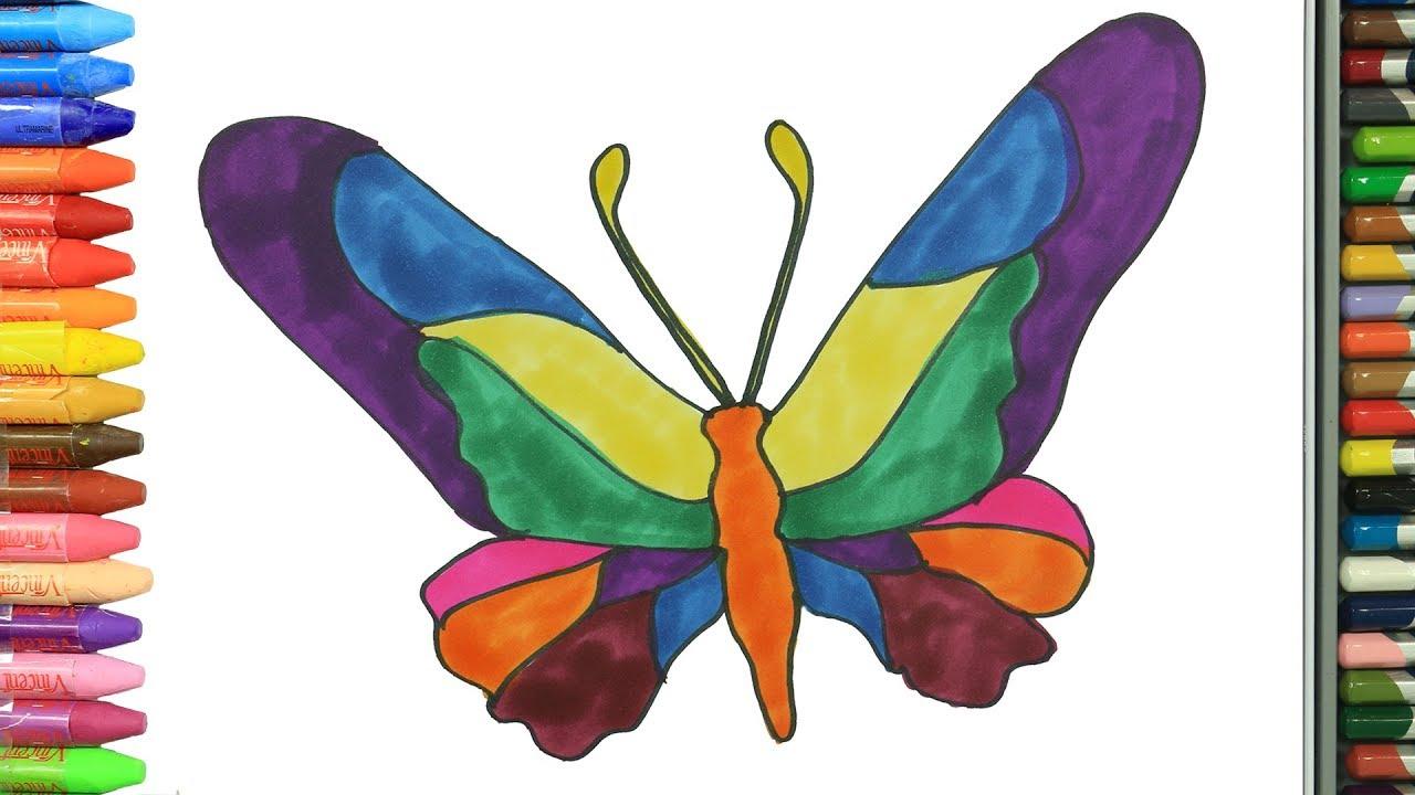 Cómo Dibujar Y Colorear Mariposa Dibujos Para Niños Learn Colors