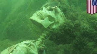 Подводный розыгрыш: скелеты устроили чаепитие на дне реки Колорадо