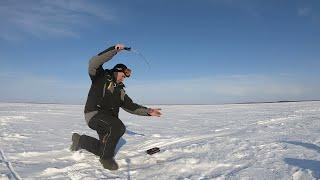 Ловля судака на водохранилище КАК НЕ ОББУРИЛИ Март 2020