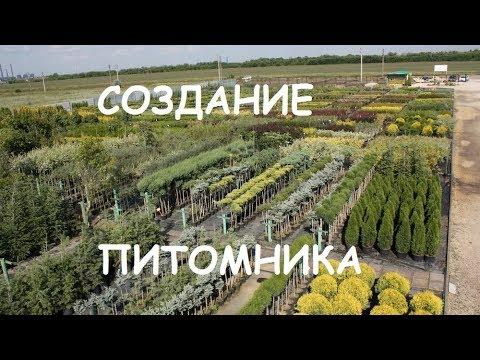 Анатолий Орлов. Организация питомника. ч.1