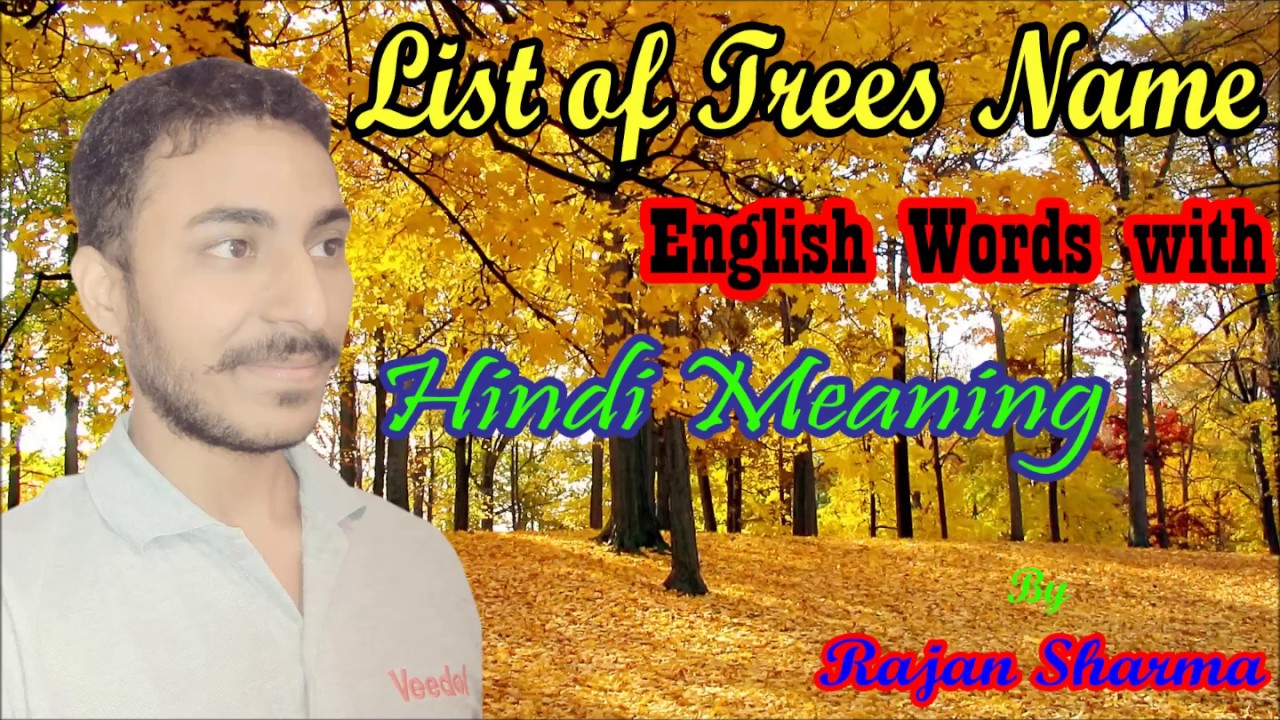 Trees Name English Words With Hindi Meaning By Rajan Sharma
