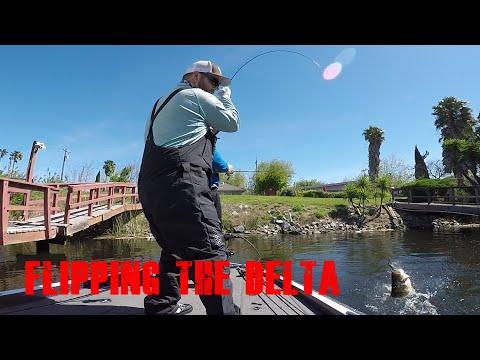 Spring Delta Fishing