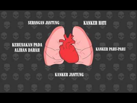 Bahaya Merokok Gambar Animasi Animasi Bahaya Rokok Final Youtube