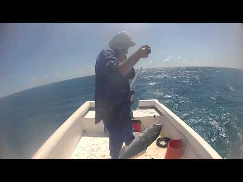 GOPRO coral trout FISHING on the Great Barrier Reef, Norlaus ep3