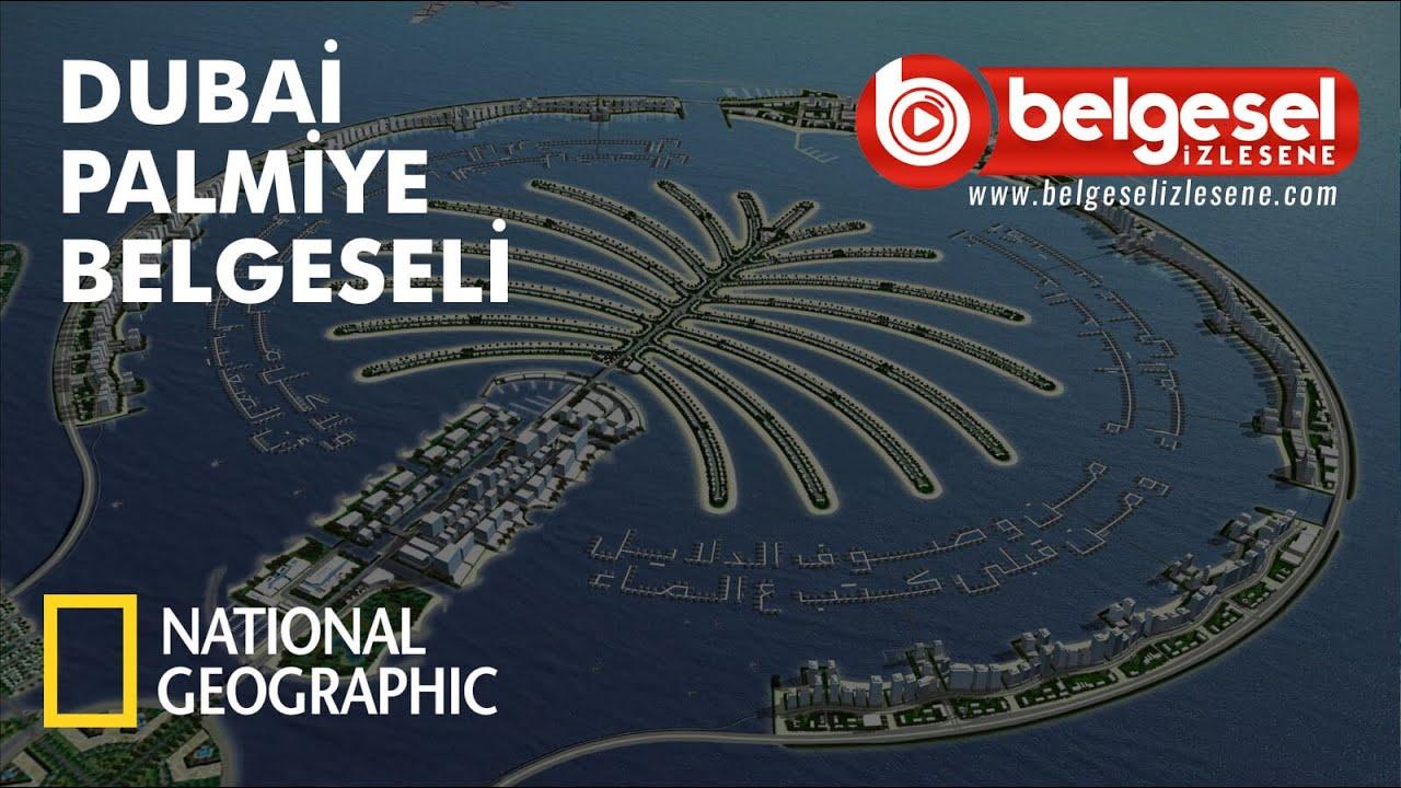 Mega Yapılar - Dubai Palmiye Adası Belgeseli - Türkçe Dublaj