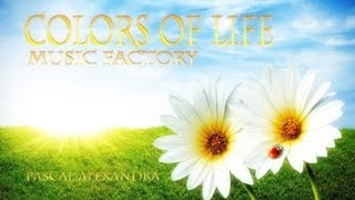 MUSIC - FACTORY ? COLORS OF LIFE ? Pascal Alexandra