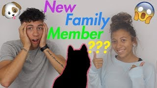 Welcoming A New Family Member // Vlog
