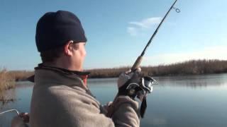 Видео о рыбалке в Астрахани на раскатах. Ловля щуки на крупные воблеры и джерки.