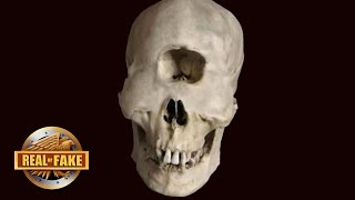 HUMAN CYCLOP SKULL DISCOVERY  - real or fake?