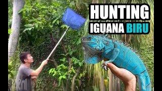 SHOCK! Digigit Iguana sampe jari sobek.. Ga kuat jangan liat
