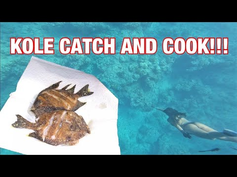 KOLE CATCH CLEAN N' COOK WITH MY GIRLFRIEND!!!