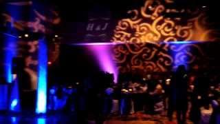 How To Rock A Punjabi Wedding! - Premium DJ Setup By DJ TIGER. Performance By Satwinder Bitti