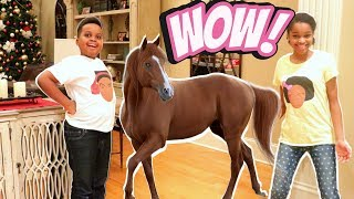 OUR PET HORSE! - Shiloh and Shasha Onyx Kids