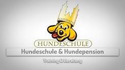 Hundeschule Magdeburg Welpenspielstunde Magdeburg Hundepension Magdeburg Hundeschule Kaiserkrone