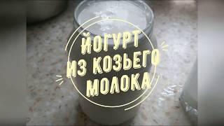 ЕДИМ НАТУРАЛЬНОЕ! ДЕЛАЕМ ЙОГУРТ #йогурт #изкозьегомолока #своимируками #еда