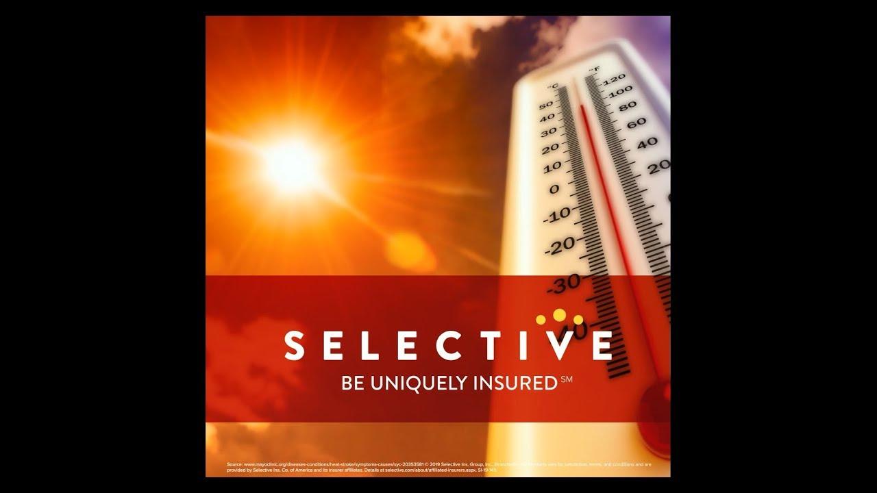 Articles | Selective Social - Selective Insurance Social