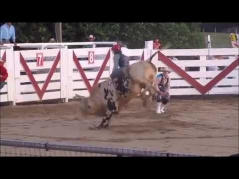 Cowtown Rodeo 7 8 2017