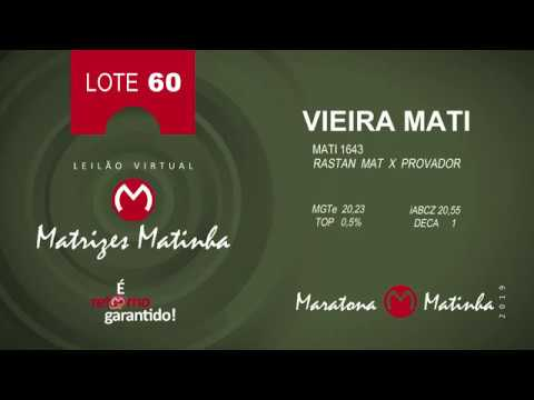 LOTE 60 Matrizes Matinha 2019