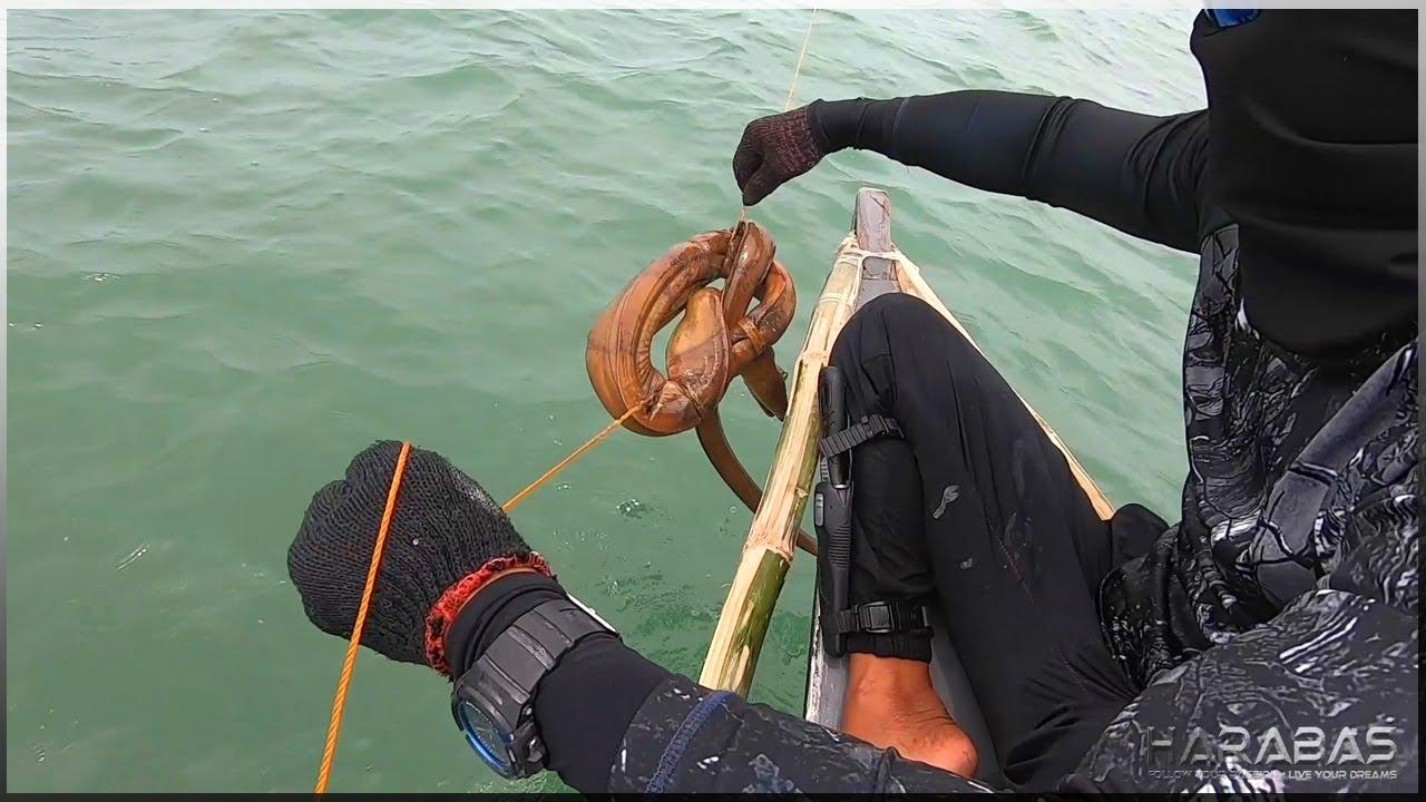 Download EP431-Part 2 - Tiba - Tiba sa Huling Malabanos   Longline Fishing   Occ. Mindoro
