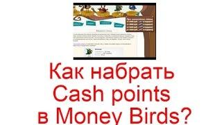 8000 тысяч рублей в день на money birds заработок в интeрнете
