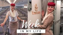 A week of my life as a Flight Attendant | 2