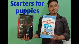 Puppy starter feed/drools starter dog food/royal canin vs drools focus