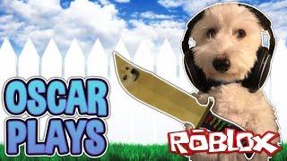 DOG PLAYS ROBLOX?!   Murder Mystery 2