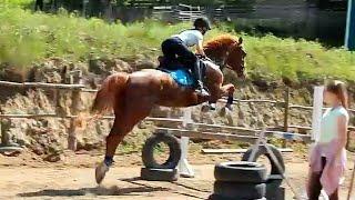 КЛИП С КОНЮШНИ или КАК ТРЕНЕРУЮТСЯ НАШИ СПОРТСМЕНЫ лошади / кони клип про лошадей