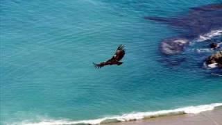 El Condor Pasa (Instrumental) very beautiful song!