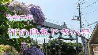 湘南モノレール・『令和元年 江の島あじさい号』運行中(Shonan Monorail)