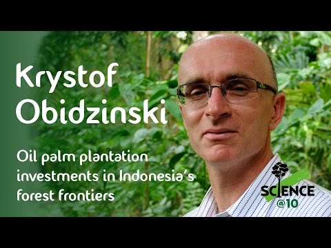 Krystof Obidzinski on oil palm plantation investments in Indonesia's forest frontiers