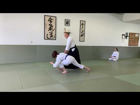 Kids Aikido Home Tutorials: ADVANCED Purple Belt, 3 Kyu, Part 1 Of 2