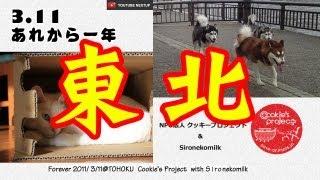 あれから一年、3.11東日本大震災から早いものでもう一年を迎えようとし...