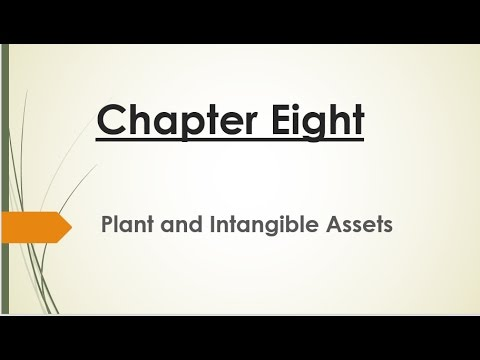 Chapter 8 Plant and Intangible Assets