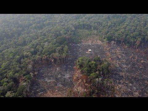 Euronews:Macron calls fires in the Amazon 'an international crisis'