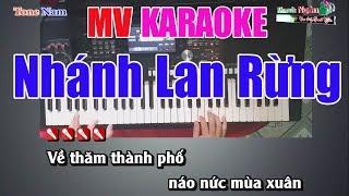 Nhánh Lan Rừng Karaoke 8795  Tone Nam - Nhạc Sống Thanh Ngân