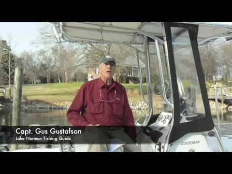 Capt. Gus - Home Helpers - Direct Link Video